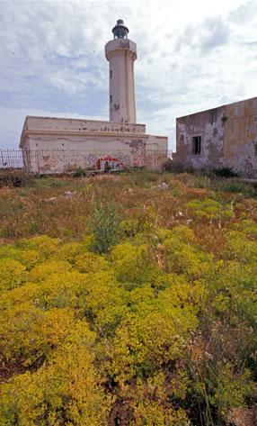 Faro Capo Murro di Porco