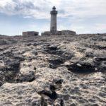 TESORI D'ITALIA MAGAZINE - AREA MARINA PROTETTA PLEMMIRIO 2.500 ettari di paradiso naturale sulla costa orientale di Siracusa
