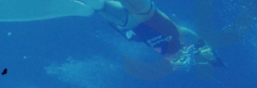 "Enzo Maiorca e Jacques Mayol raccontati in ""The Dolphin man"". VIDEOINTERVISTA  a Patrizia Maiorca"