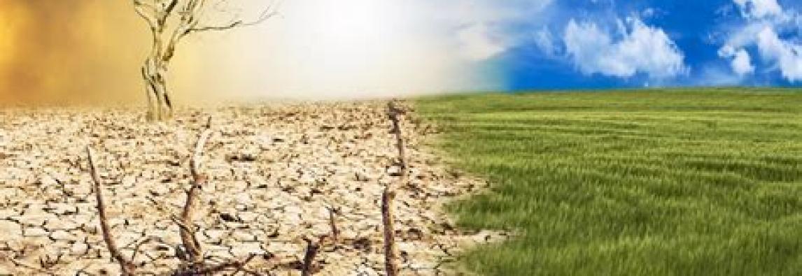 L'intervento-Licia Colò: Siccità e alluvioni, se la terra si ammala