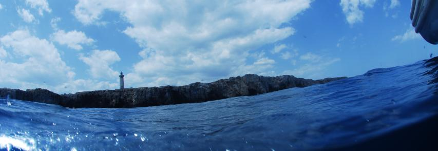 Scoperta causa moria pesci al porto piccolo di Siracusa