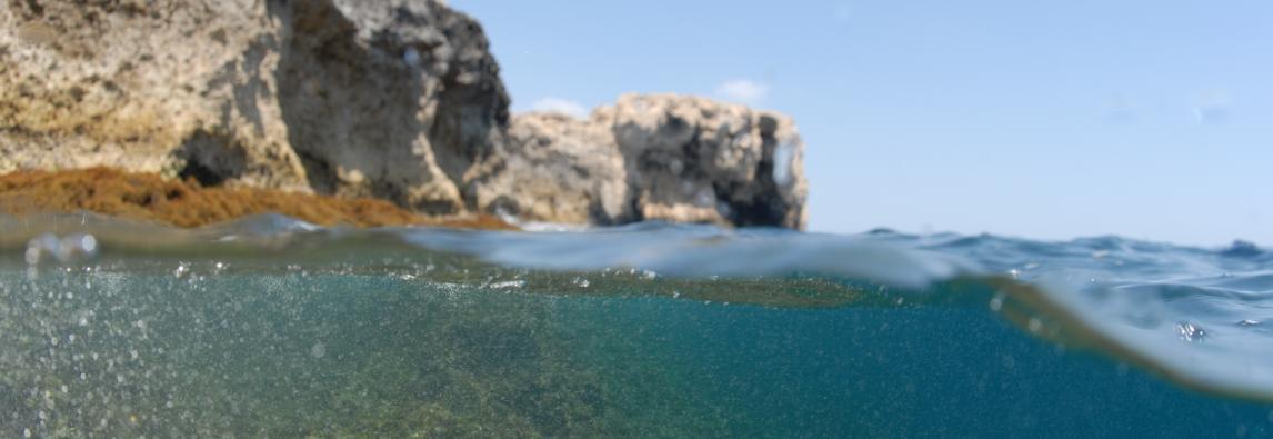 aiuta il mare a respirare