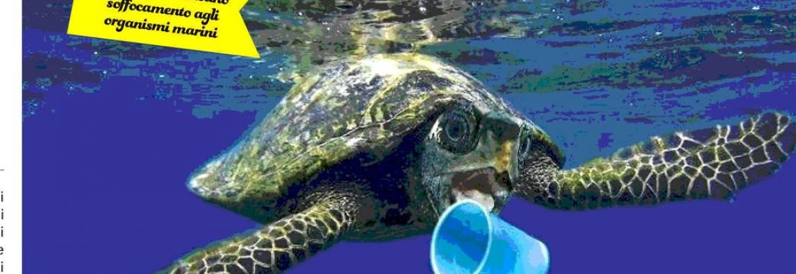 Il Comitato scientifico One Ocean Forum: saremo sommersi dalla Plastica