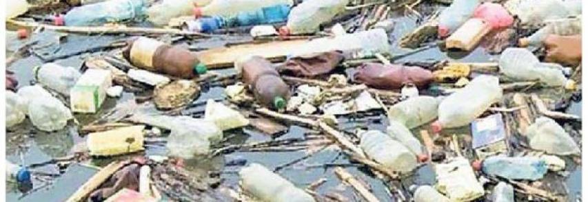 PICCOLO  Caccia aperta ai rifiuti nel mare di Benedetta Moro