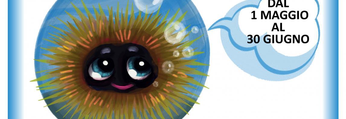 """""""Non è un capRICCIO"""" – al via  campagna di sensibilizzazione sul fermo biologico dei ricci di mare"""