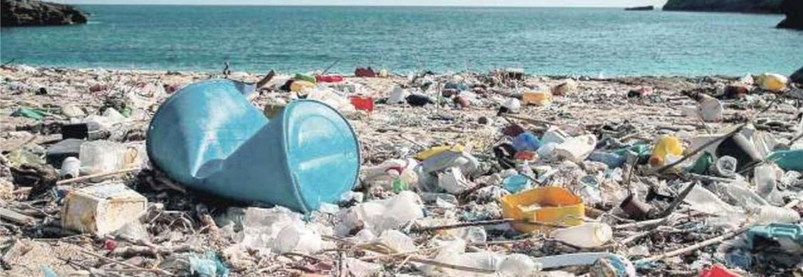 Il Parlamento europeo apprva la legge per proteggere l'ambiente, dai bicchieri ai piatti addio alla plastica