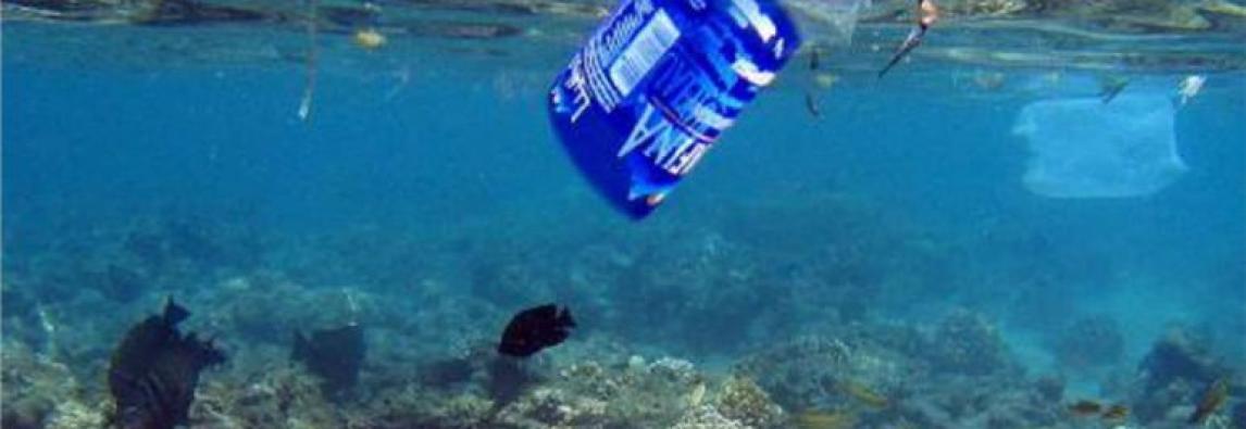 ARENA –  C`è un mare di plastica *di Stefania De Francesco