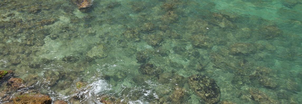 PROGETTO EU FIN EUROPEAN UNION FISHING NETWORK ALL'AMP DEL PLEMMIRIO